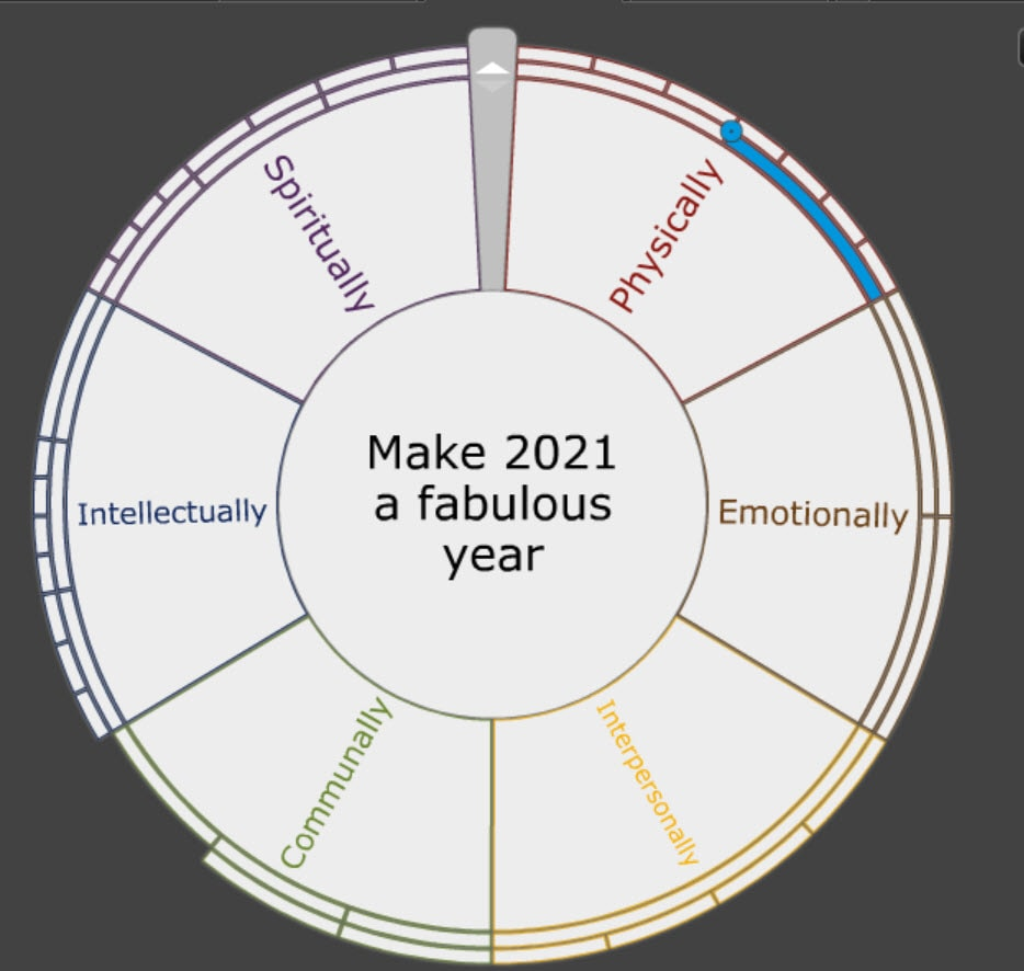 Goals for 2021 Using Goalscape software