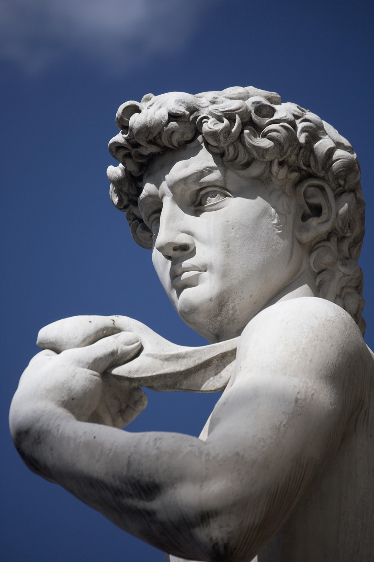 Michelangelo's David in the Piazza della Signoria Florence Italy